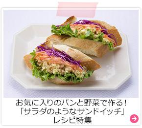 お気に入りのパンと野菜で作る!「サラダのようなサンドイッチ」レシピ特集