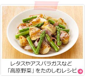 レタスやアスパラガスなど「高原野菜」をたのしむレシピ