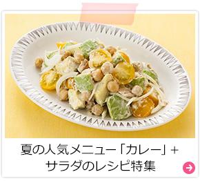 夏の人気メニュー「カレー」+サラダのレシピ特集