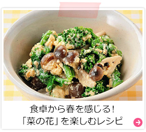 食卓から春を感じる!「菜の花」を楽しむレシピ