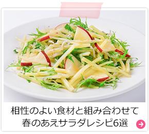 相性のよい食材と組み合わせて 春のあえサラダレシピ6選