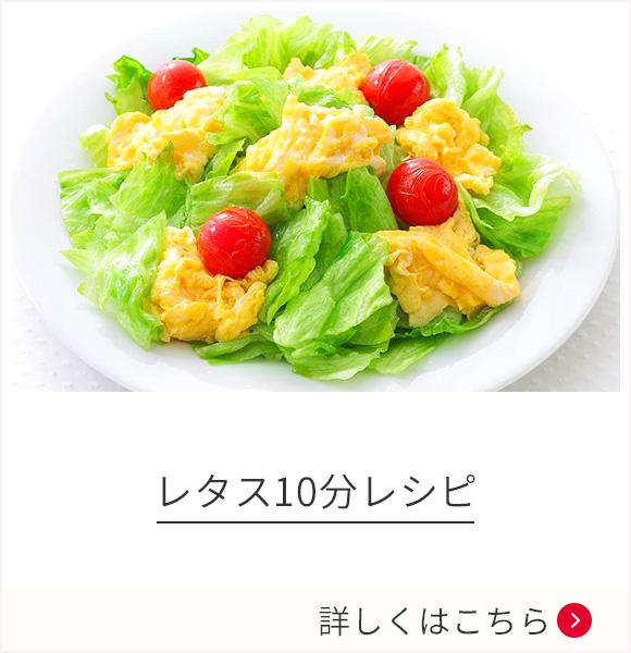 レタス10分レシピ