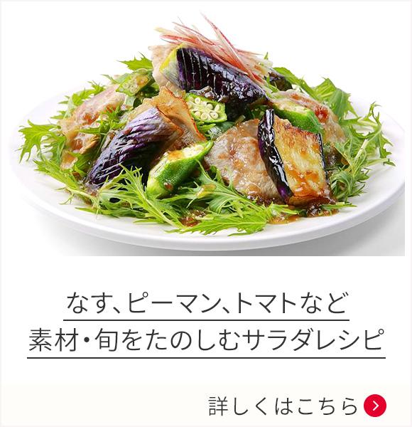 なす、ピーマン、トマトなど 素材・旬をたのしむサラダレシピ